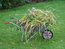 Atl Landscape Gardener