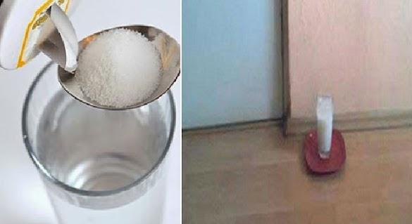 Simpan Sėgėlas Air Garam di Sudut Ruangan Rumah Anda Sėlama 24 Jam, dan Kamu Akan Kagėt Mėlihat Hasilnya!
