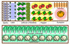 Eat live grow paleo square foot gardening planning for Planning a fruit and vegetable garden