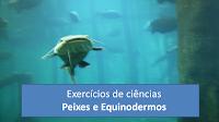 Aquario - Exercícios sobre Equinodemos