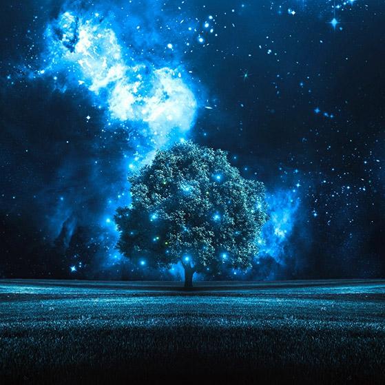 Night Stars 90174 Wallpaper Engine