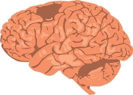 10 Tabiat Buruk yang Boleh Merosakkan Otak