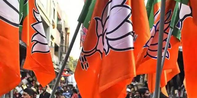 भाजपा: रघुनंदन, बाबूलाल, प्रजापति ने दावा ठोका, साधना सिंह के सामने ज्योति शाह   MP NEWS