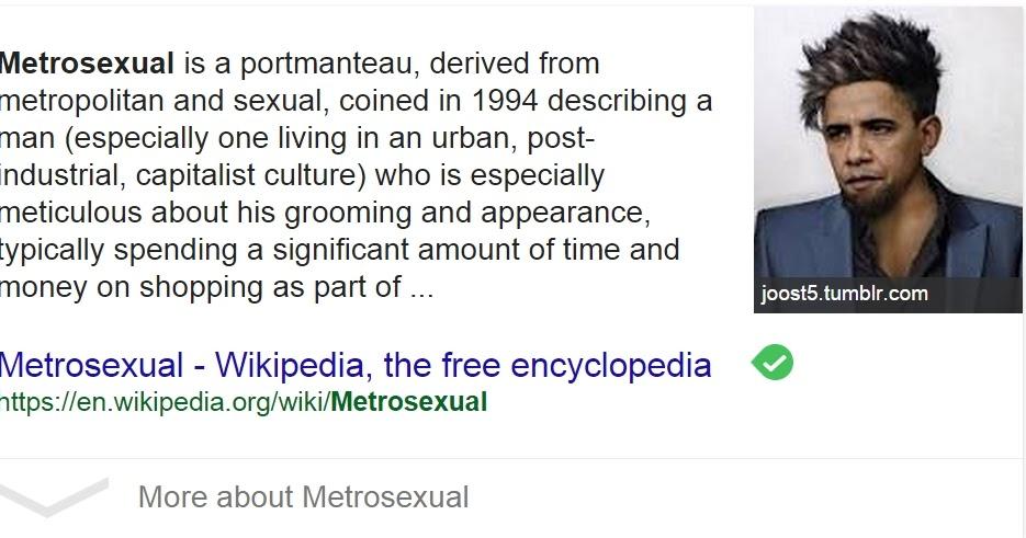 Google википедия метросексуал