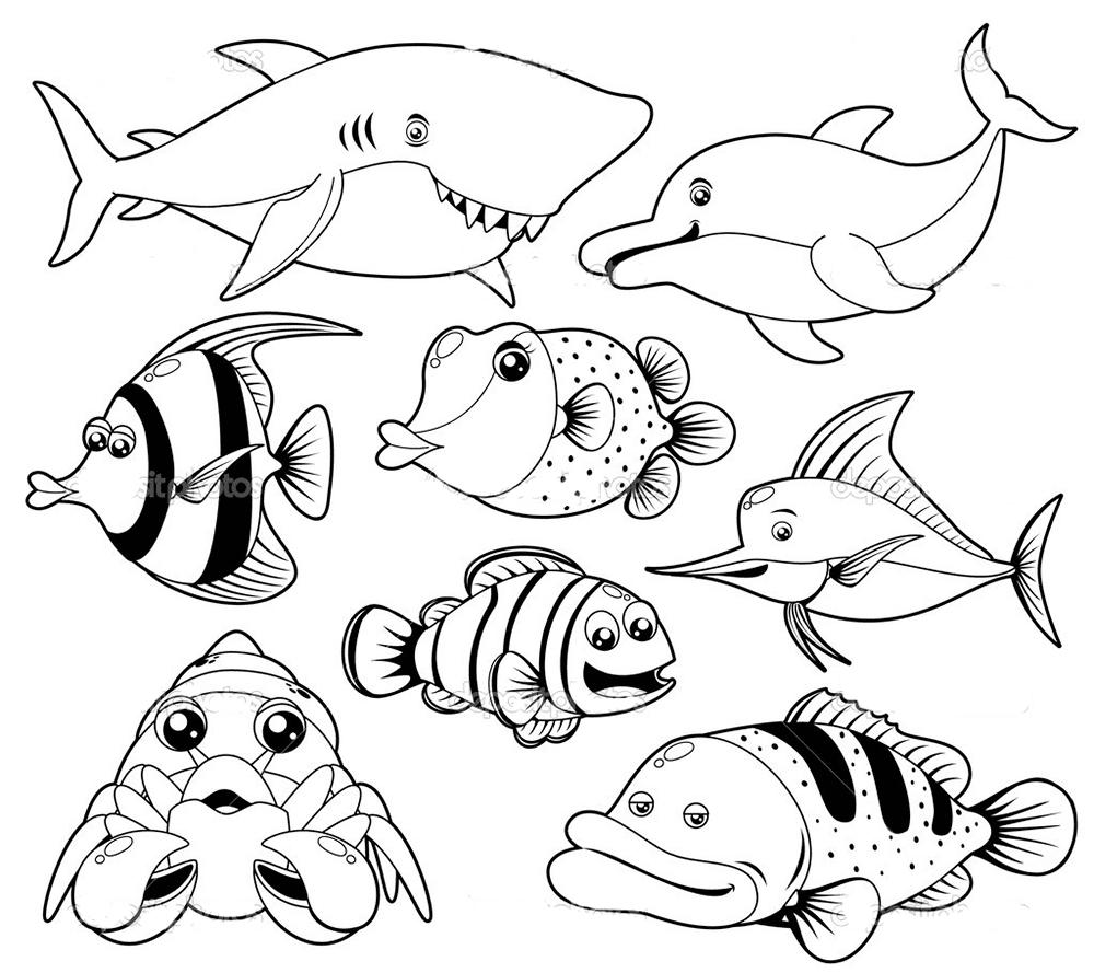 Gambar Mewarnai Binatang Laut 3