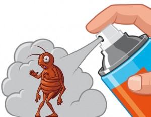 امهر شركة رش مبيدات بالدمام والمملكة العربية السعودية
