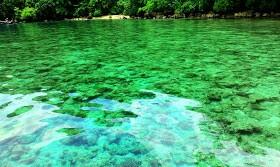 Teluk Banyu Biru  Potensi Obyek wisata Bahari ini dengan kategori teluk di Banyuwangi bukan hanya ada Teluk Ijo akan akan tetapi juga ada Teluk Banyu Biru. Lokasi dari Teluk Banyu Biru ini berada di wilayah administrasi Kecamatan Muncar, Banyuwangi, yang lokasinya juga berada tepat di balik semenanjung Sembulungan yang juga masih termasuk dalam area Taman Nasional Alas Purwo.   Masyarakat Banyuwangi yang tinggal disekitar lokasi ini menyebut objek wisata teluk biru ini dengan sebutan Selanggrong. Selanggrong ini mempunyai keindahan alam bawah Bahari yang akan membuat kalian kagum.
