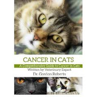 Cancer in Cats Book