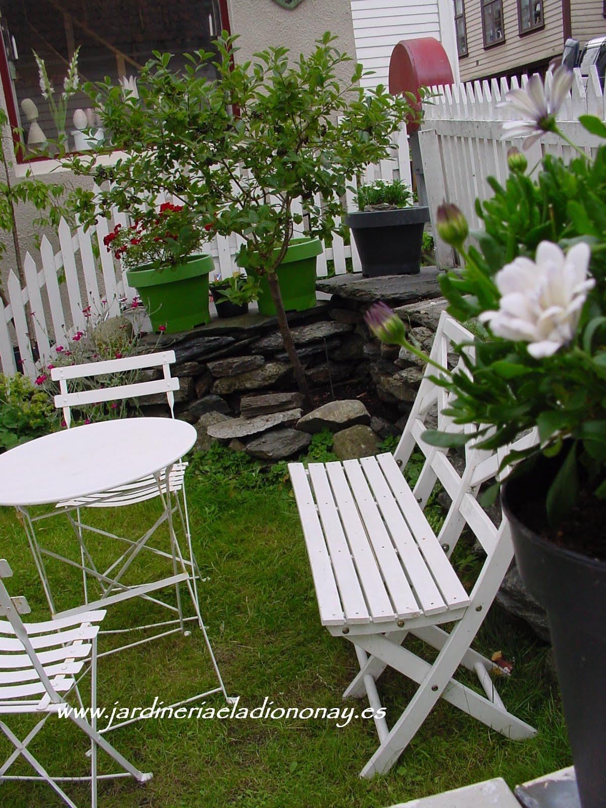 Jardineria eladio nonay verde y blanco en un jard n for El jardin acordes