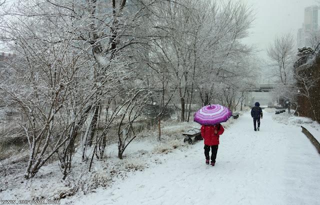 Señoras coreanas paseando bajo la nieve