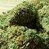 Δύο συλλήψεις στη Λάρυμνα Φθιώτιδας για διακίνηση ναρκωτικών