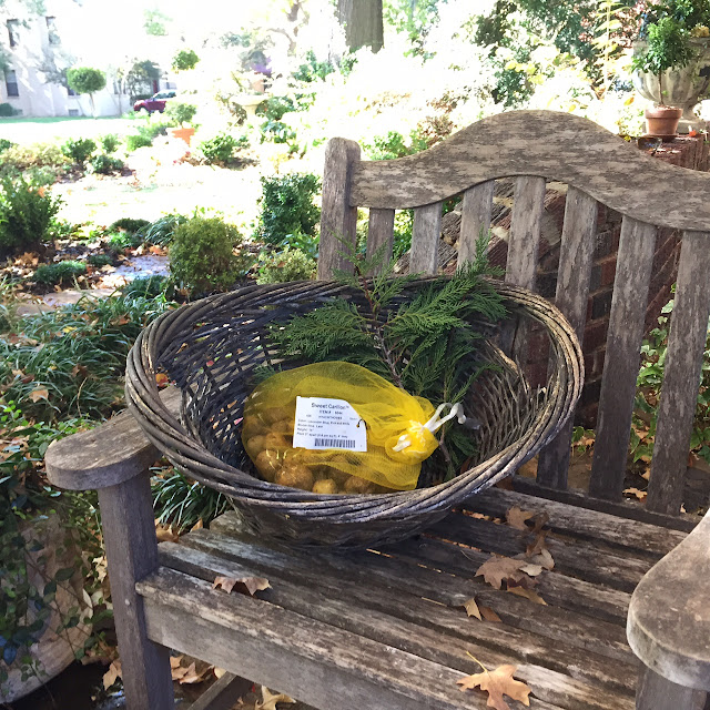 Bulbs in a yellow mesh bag sit in a wicker basket waiting for their new home.