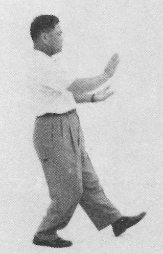 Tai Chi Chuan (Square Form) 112. Pat The Horse High (Left)