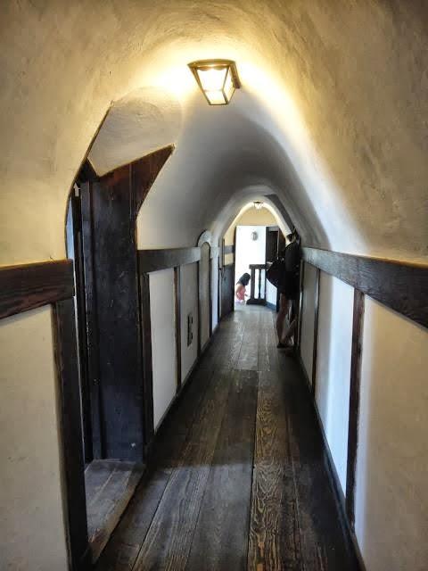 Resultado de imagen para interior castillo dracula
