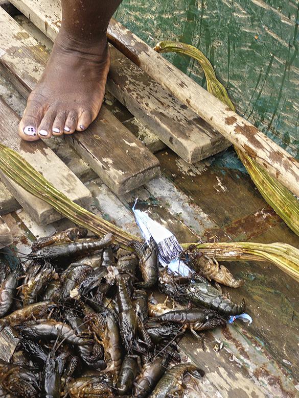 río Cayapas, Esmeraldas, Ecuador negro, afroecuatoriano