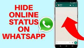 Cara Menyembunyikan Whatsapp Status online 2