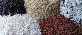 www.Manfaat Baik Yang Bisa Di Dapatkan Dari Beras Merah, Coklat, Dan Padi Liar