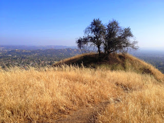 View south from the upper reaches of Colby Trail in Glendora