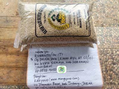 Benih pesanan RUWANTO Indramayu, Jabar.   (Sebelum Packing)