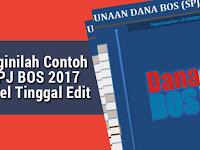 Beginilah Contoh SPJ BOS 2017 Excel Tinggal Edit