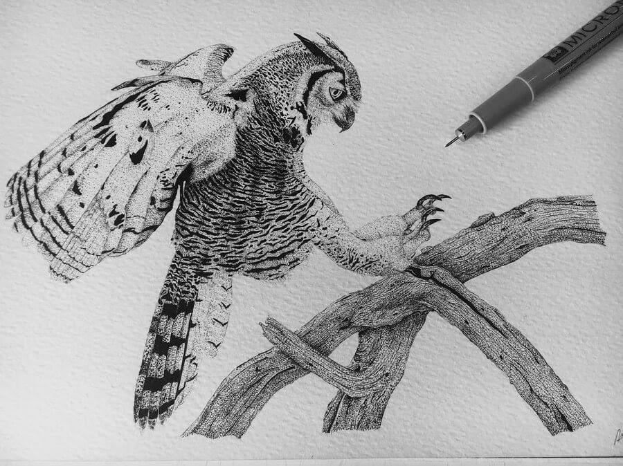 03-Owl-in-Flight-Paige-Bates-www-designstack-co