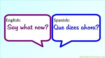 She Didn't Speak English, an exercise in communication | www.BakingInATornado.com | #communication #MyGraphics