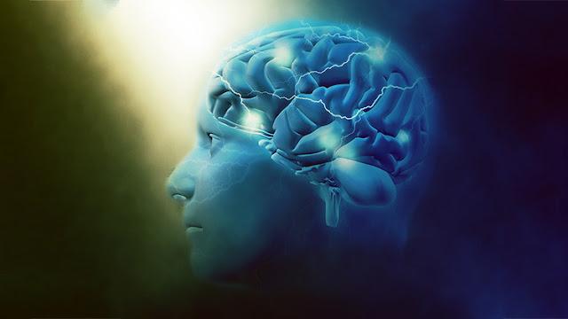 Científicos descubren un universo multidimensional en nuestro cerebro