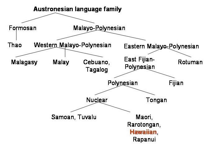 Language Family Example 20512 Loadtve