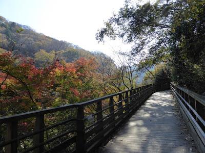 星のブランコ・秋の紅葉ウォーキング