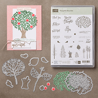 https://www.stampinup.com/ecweb/productdetails.aspx?productid=144328&utm_source=olo&utm_medium=main-ad&utm_campaign=new-olo-homepage&demoid=21860