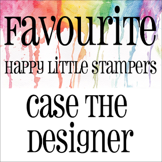HLS CASE The Designer Favourite