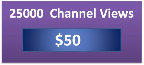 25000 twitch channel views, twitch viewer bot