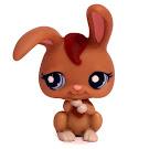 Littlest Pet Shop Multi Pack Rabbit (#1766) Pet