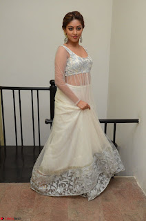 Anu Emmanuel in a Transparent White Choli Cream Ghagra Stunning Pics 035.JPG