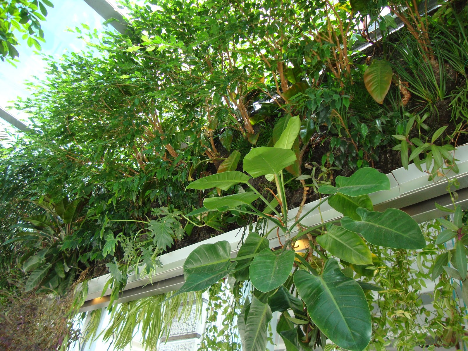 Good come abbellire un giardino un piccolo giardino in for Rete con foglie finte