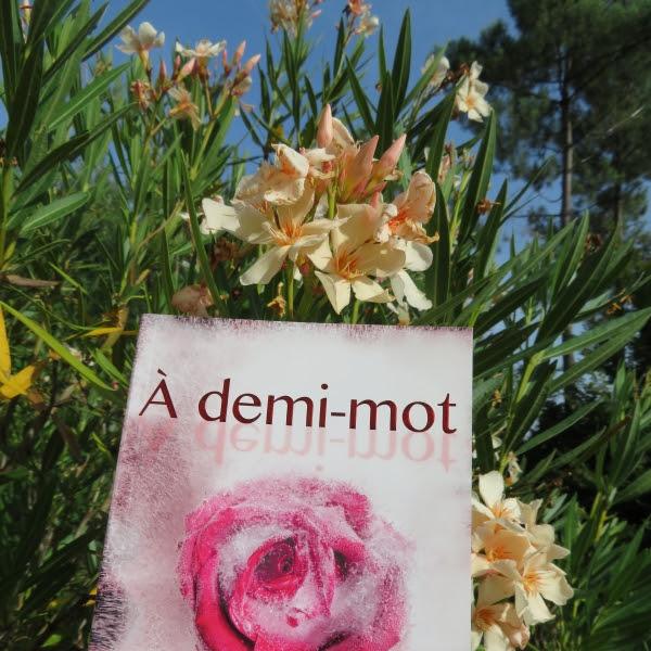 A huis clos, tome 2 : A demi-mot de Jennifer L. Armentrout