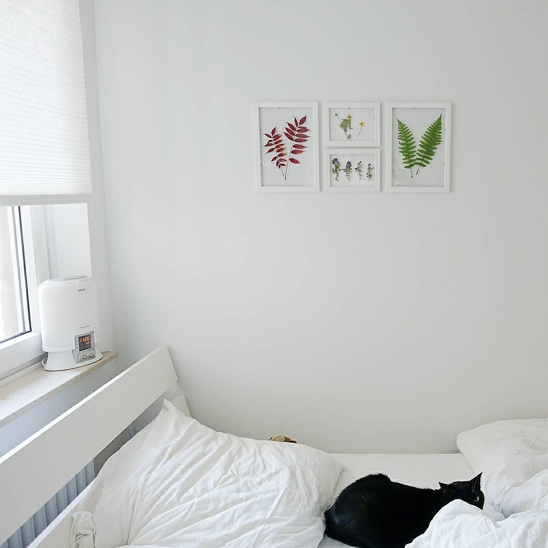 Trend Trockenblumen: Schnell und einfach mit Trockenblumen basteln / Getrocknete Blumen einrahmen / Basteln mit Trockenblumen / judetta.de