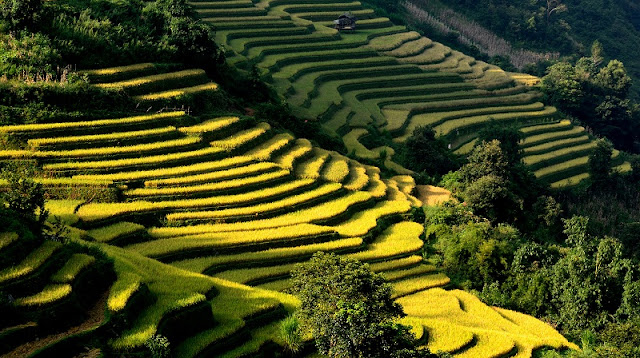 Autumn - The Best Time To Travel To Vietnam 5