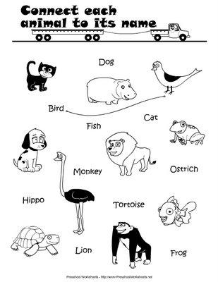Colorea Los Animales En Inglés