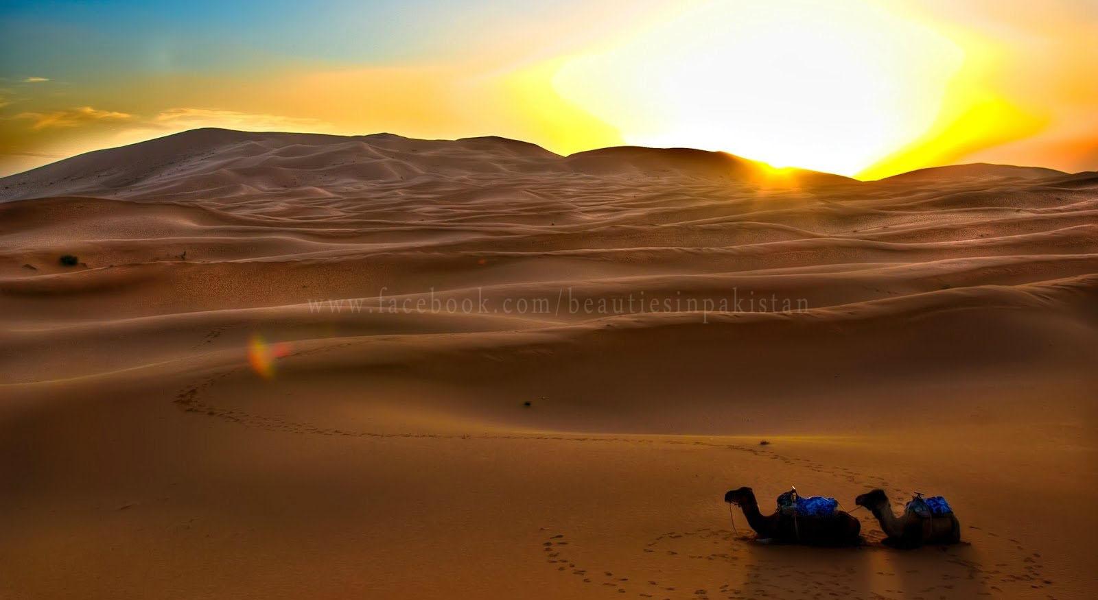 top thar desert sunset - photo #12