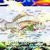 Mengenal Struktur Serta Fungsi Sistem Pencernaan Pada Ikan