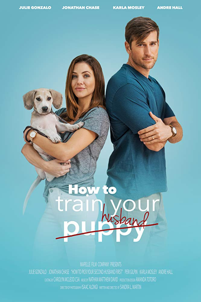 How to Train Your Husband 2018 Hindi Dual Audio 300MB HDRip Download