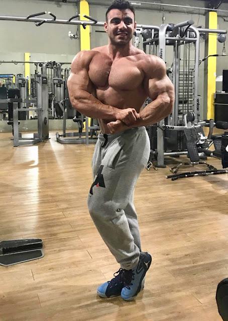 Muscle Ammiratore: IFBB Pro RAFAEL BRANDAO FROM BRAZIL ...