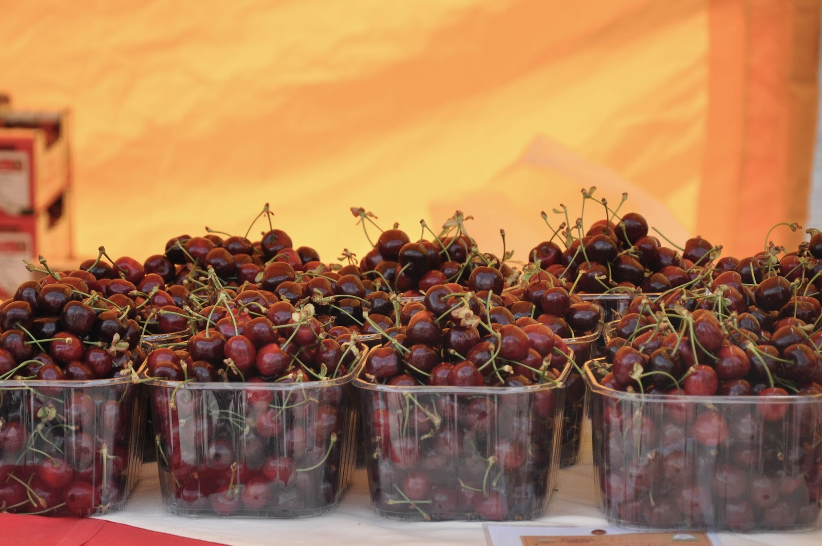 Close up of cherries ready for sale, Cherry Show Market, Marostica, Veneto, Italy
