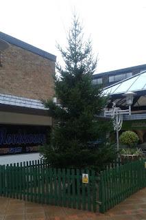 Christmas tree in Cheadle Hulme