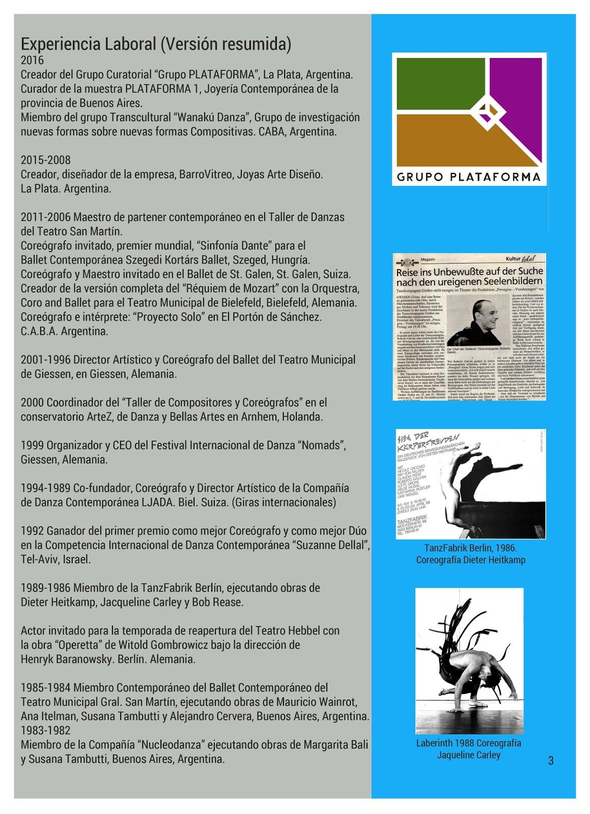 Roberto Galván Arte: Curriculum Vitae