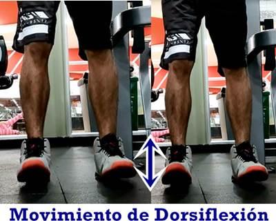 Movimiento de dorsiflexión para ejercitar músculos fibular y tibial