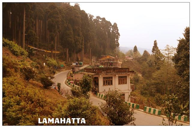 Lamahatta ecotourism Darjeeling