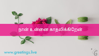 I LOVE YOU  in Tamil Language (Nāṉ uṉṉai kātalikkiṟēṉ),Love in English written with leafs and flowers