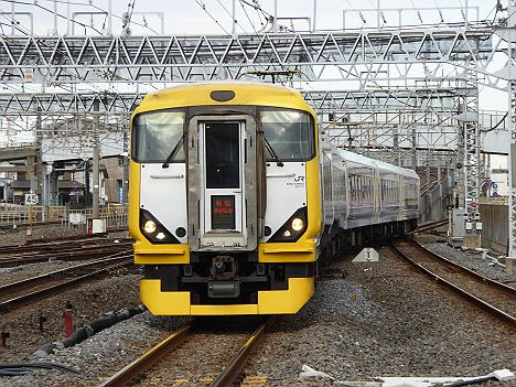 特急新宿さざなみ 館山行き E257系